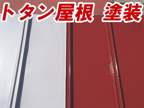 totan-roof-painting