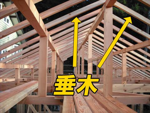 垂木(内側)