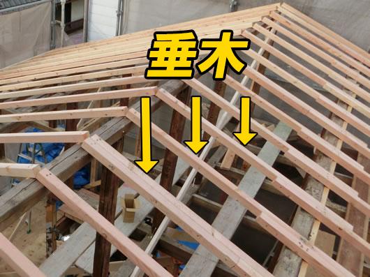 垂木(外側)