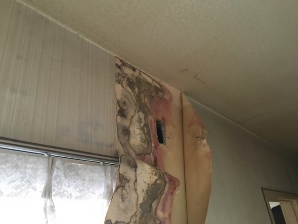 雨漏りによる壁の傷み